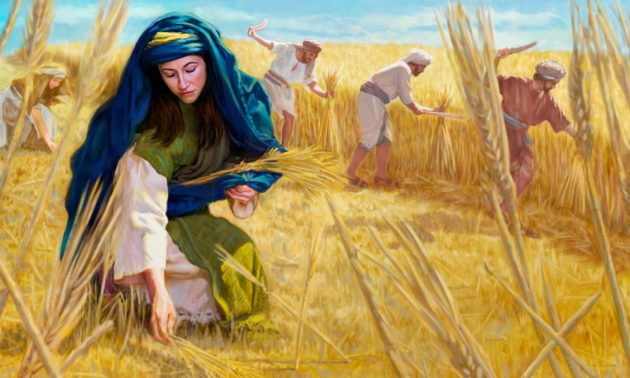 ruth_gleaning